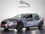 Jaguar1208